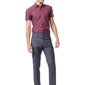 The-Pellicione-Shirt (FRONT)